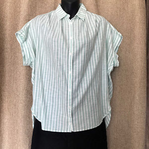 Madewell Central Shirt in Mint and White Stripe
